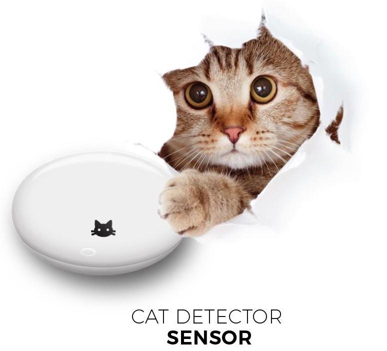 gluma 1 aprilie allview senzor cat detector