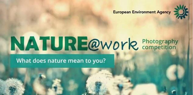 concurs fotografie natura europa