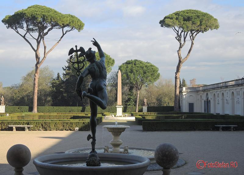 foto pini umbrela Villa Medici roma italia