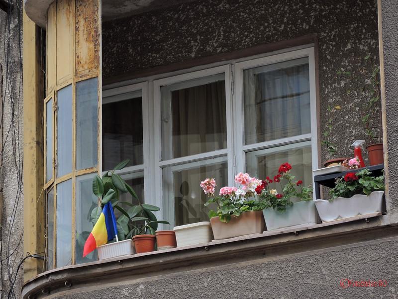 poza fotografie steagul tricolor balcon bucuresti