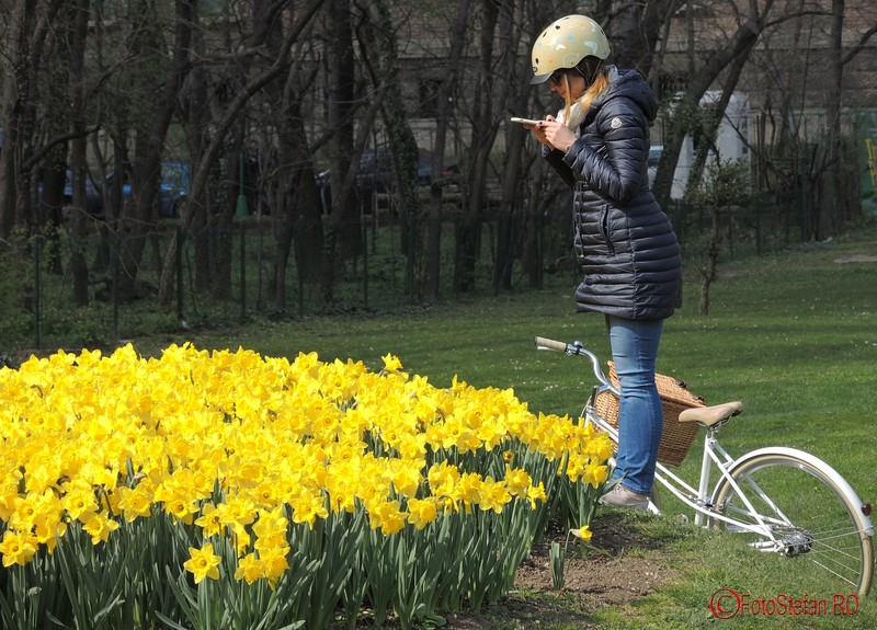 poza fata fotograf flori galbene bucuresti