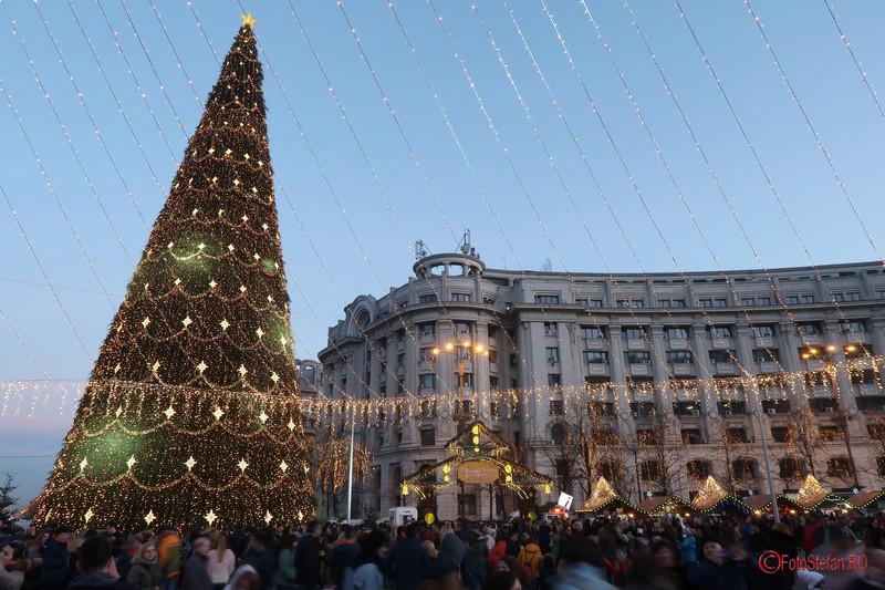 christmas tree bucharest christmas market 2017 photos