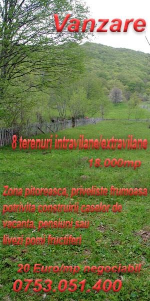 terenuri de vanzare valea doftanei