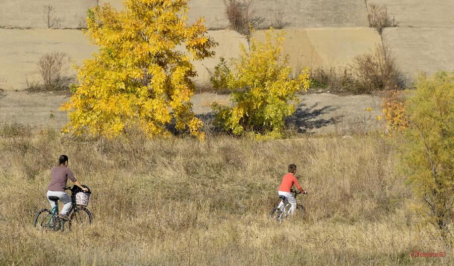 poze foto biciclisti Parcul Natural Vacaresti Delta din Bucuresti cicloturism