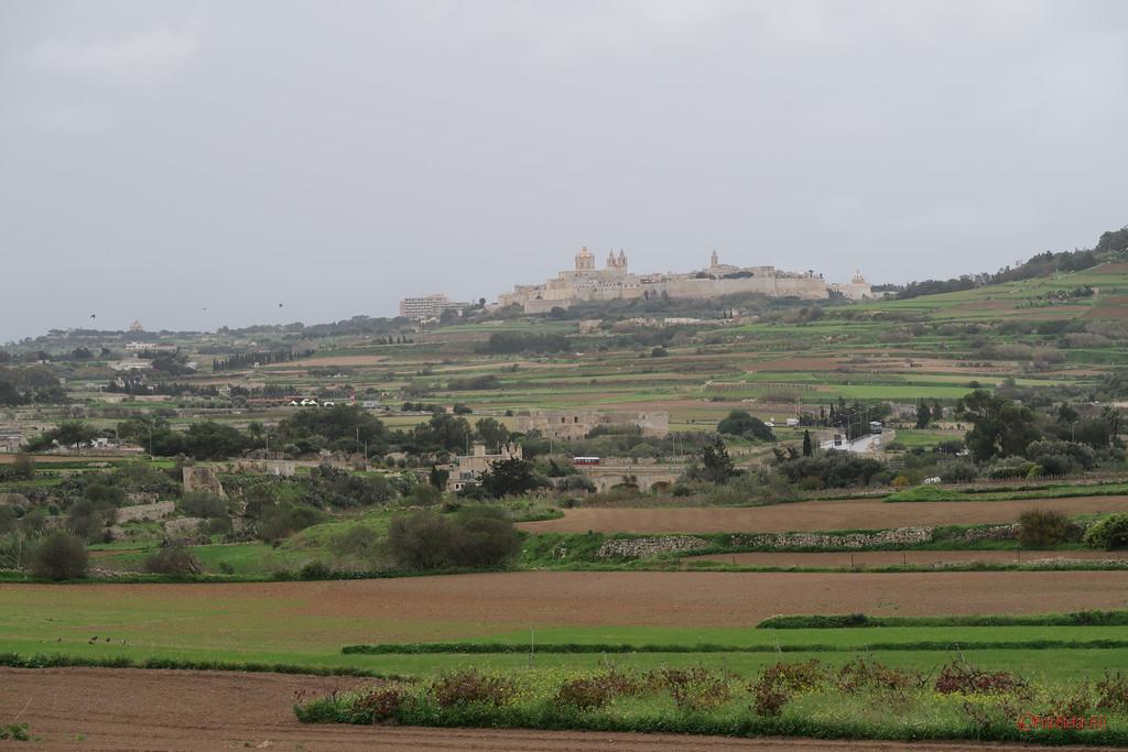 poza fotografii madina malta oras medieval