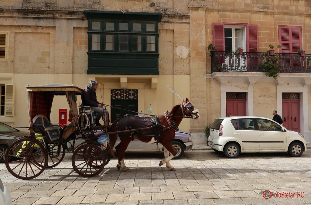 fotografie poza trasura cai turisti mdina malta