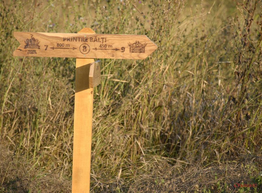 poza semn indicator cicloturism Parcul Natural Vacaresti Bucuresti