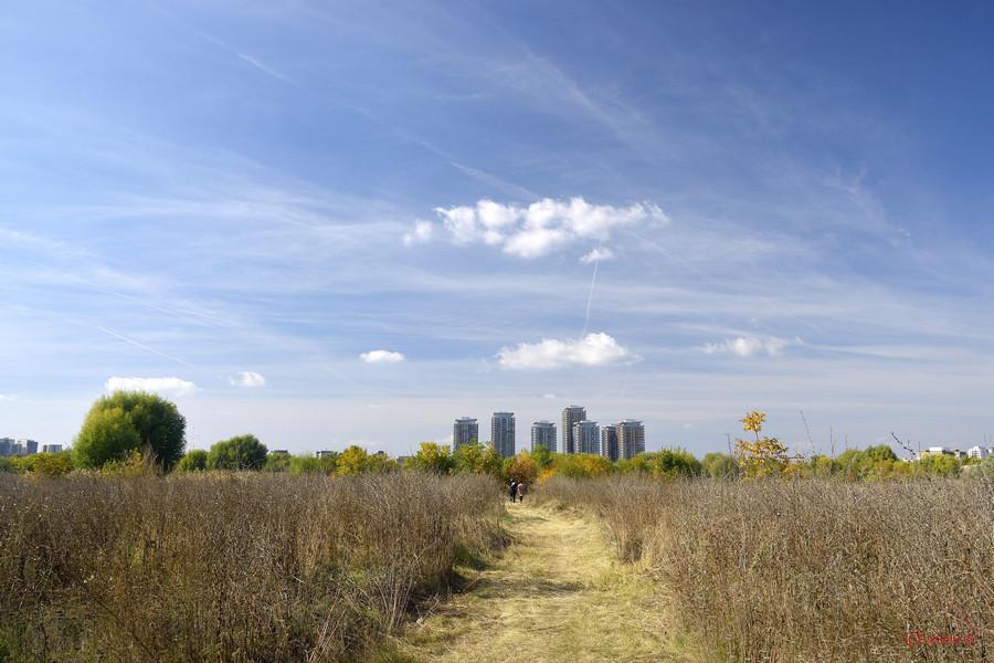 poza foto poteca Parcul Natural Vacaresti  Delta Bucurestiului
