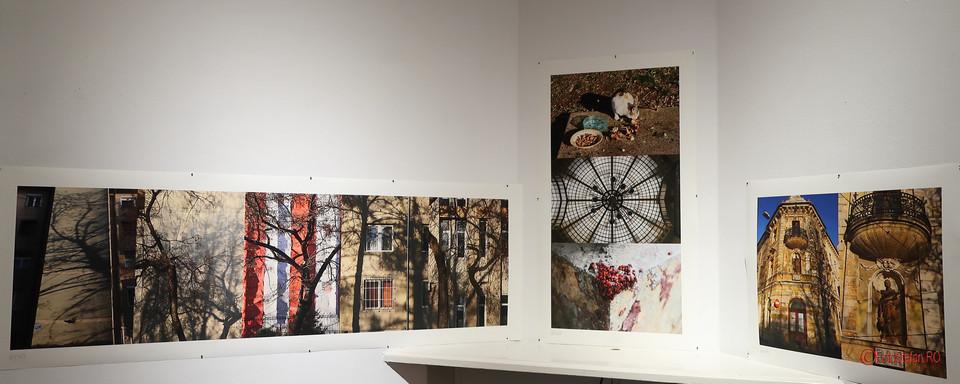 fotograf Radu Igazsag poze oradea institutul maghiar balassi