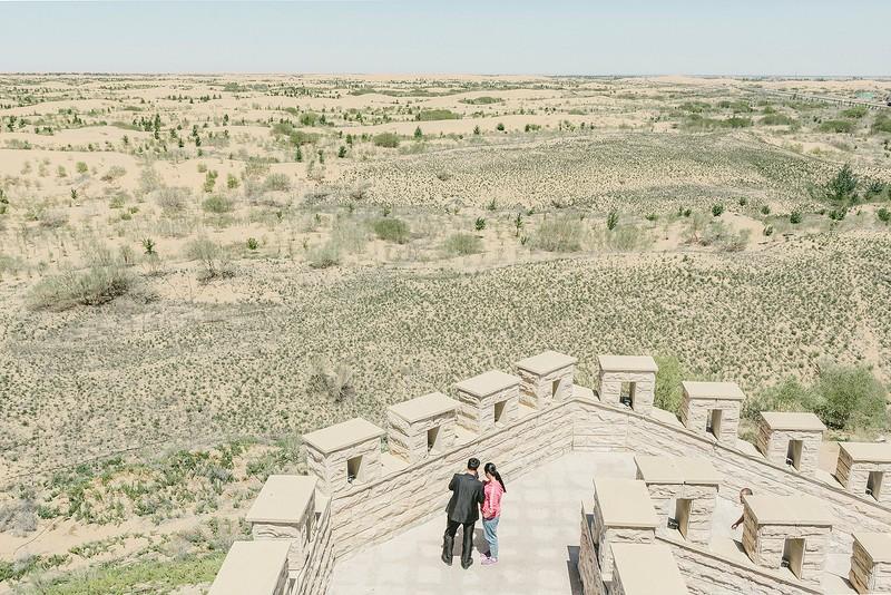 poza desert china nisip copaci kubuqi