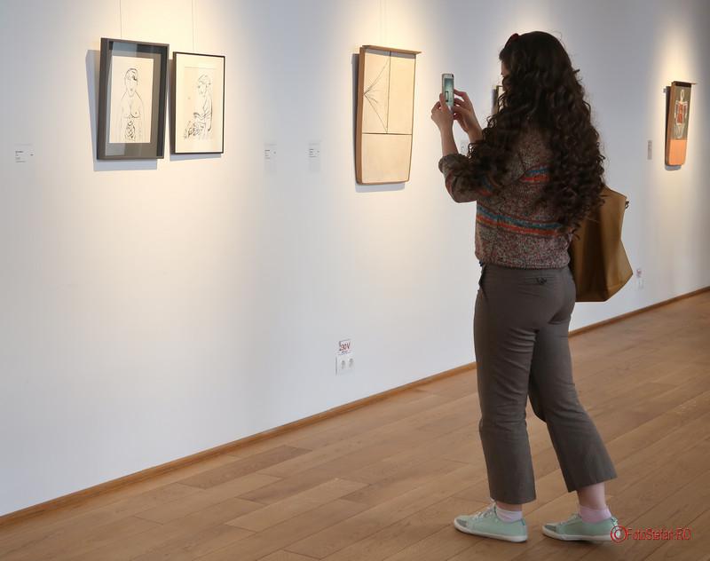 poza fotograf telefon mobil expozitie arta arcub