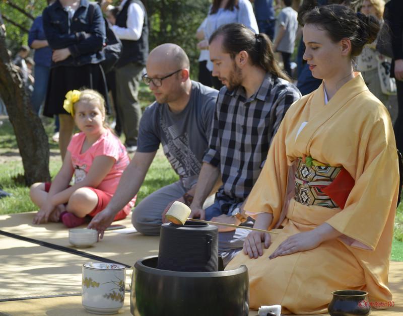 poza ceremonia ceaiului gradina japoneza bucuresti parcul herastrau