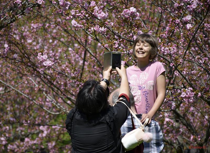 poza fata zambind gradina japoneza parcul herastrau bucuresti