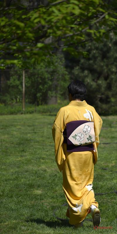 poza kimono galben rochie japoneza fata bucuresti