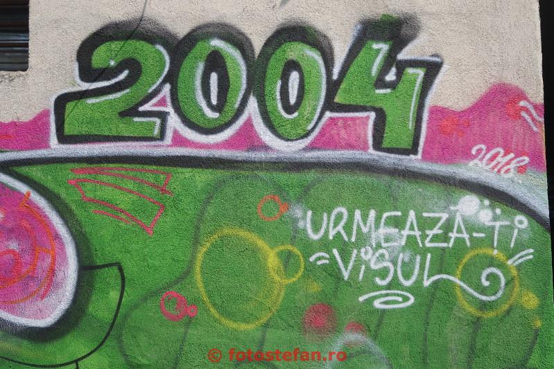 poza graffiti verde traieste-ti visul 2004