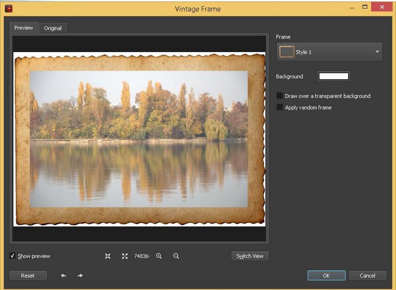 efect rama poza BatchPhoto Enterprise program prelucrare fotografii
