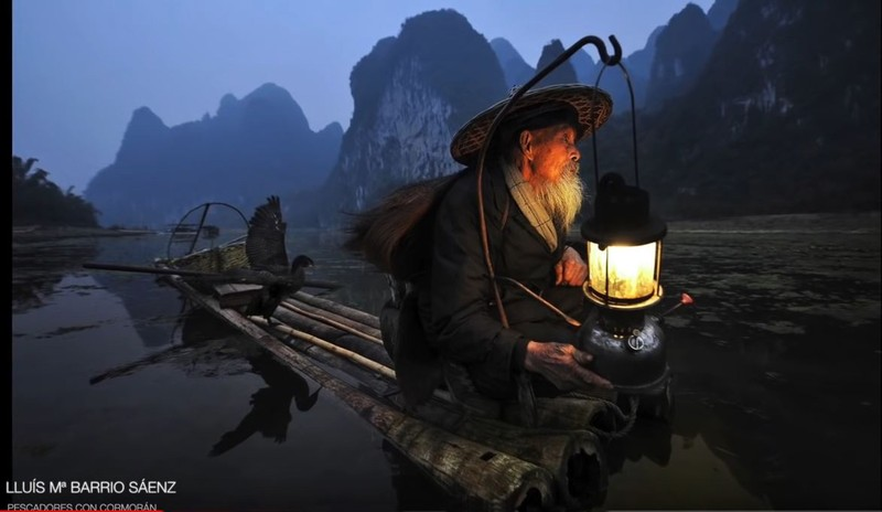 poza pescar chinez asia cormoran