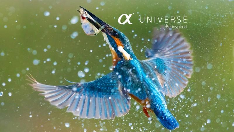 Sony α Universe Europe site pasionati fotografie fotografi