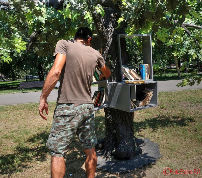Copacul cu Carti poze parcul izvor lectura aer liber
