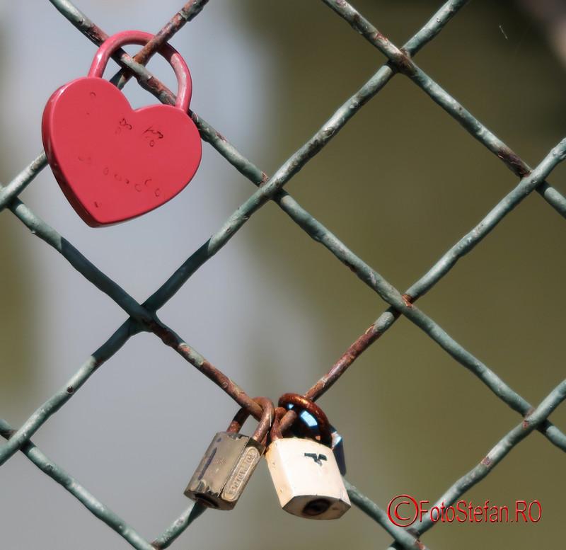 lacatele iubirii poze podul indragostitilor timisoara romania