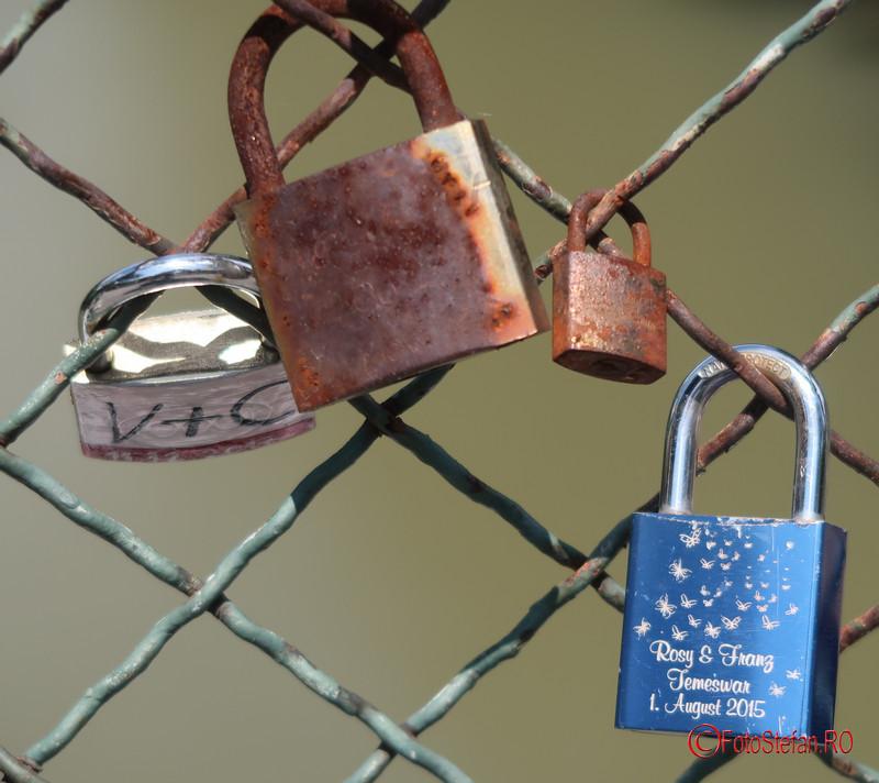 lacatele iubirii poze podul indragostitilor timisoara love locks