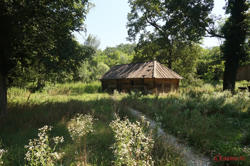 Muzeul Satului Timisoara poze case taranesti banat fotografii padurea verde
