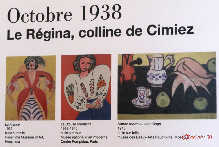 poza luza romaneasca Muzeul Matisse Nisa Franta