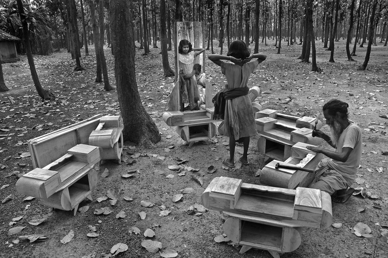 Somenath Mukhopadhyay  poza India Woodsy Fancy poza padure lemn familie