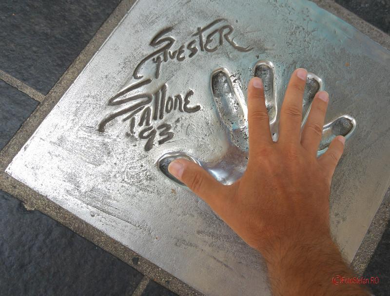 Silvester Stallone Palais des Festivals Cannes France poze