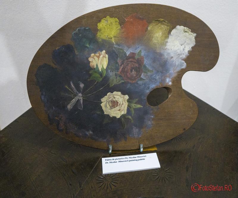 poza paleta pictura dr. nicolae minovici muzeu fotografii bucuresti