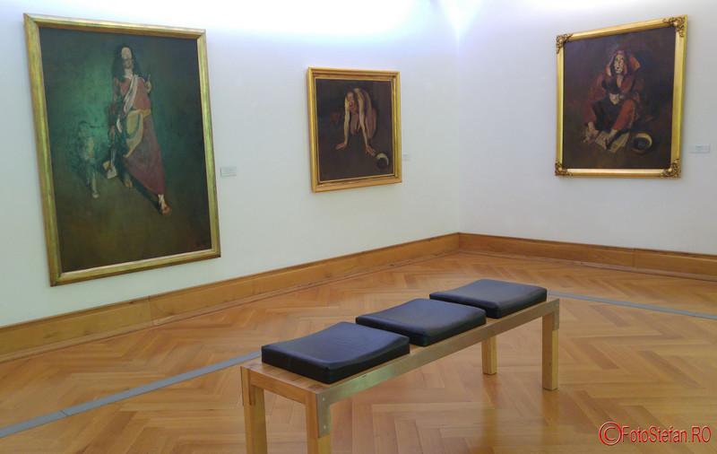 poze fotografii Muzeul de Arta Timisoara