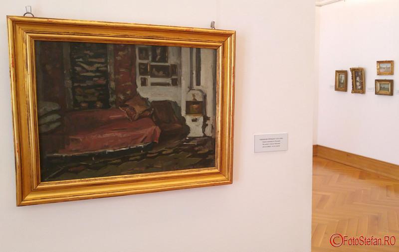picturi tablouri muzeul de arta timisoara fotografii
