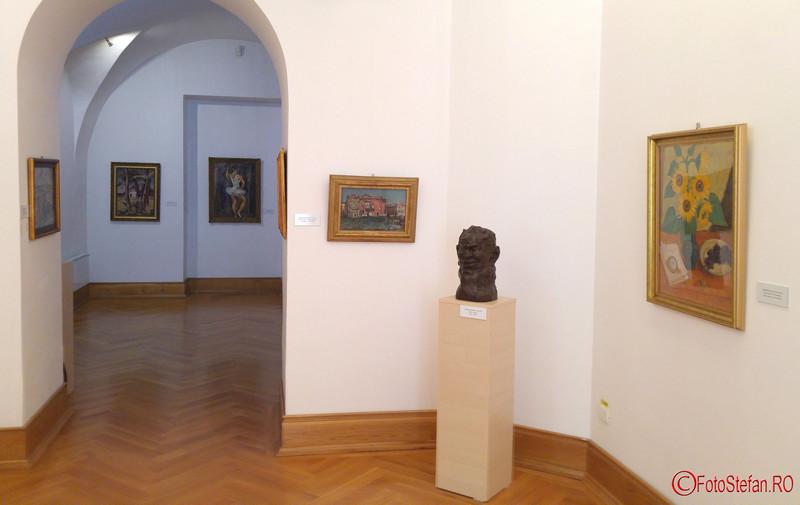 exponate Muzeul de Arta Timisoara poze fotografii