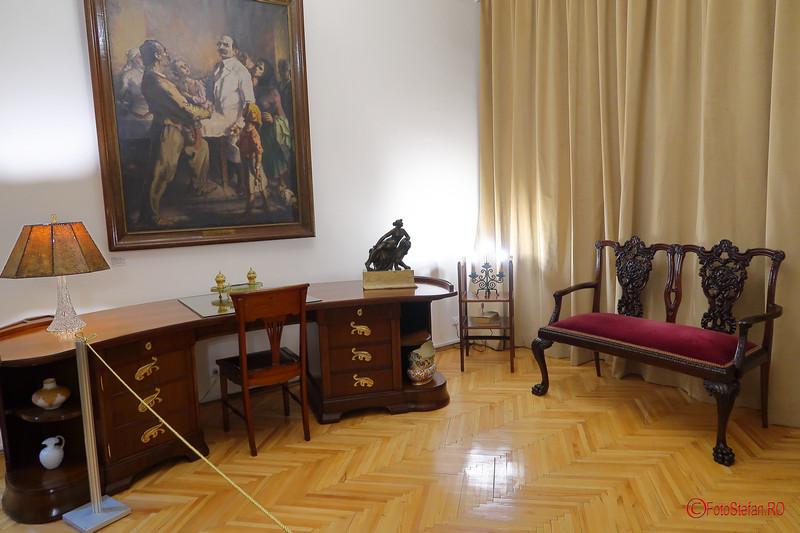 muzeul Victor Babes poze fotografii bucuresti dorobanti
