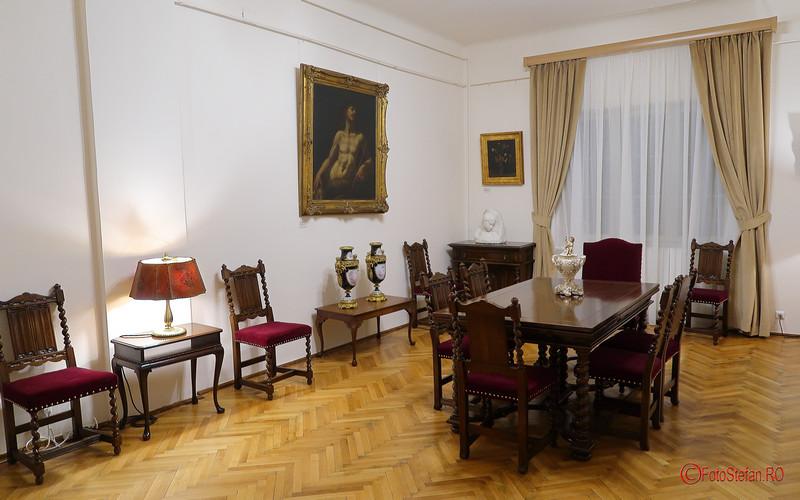 fotografii mobilier mobila muzeul Victor Babes Bucuresti Romania medicina doctor