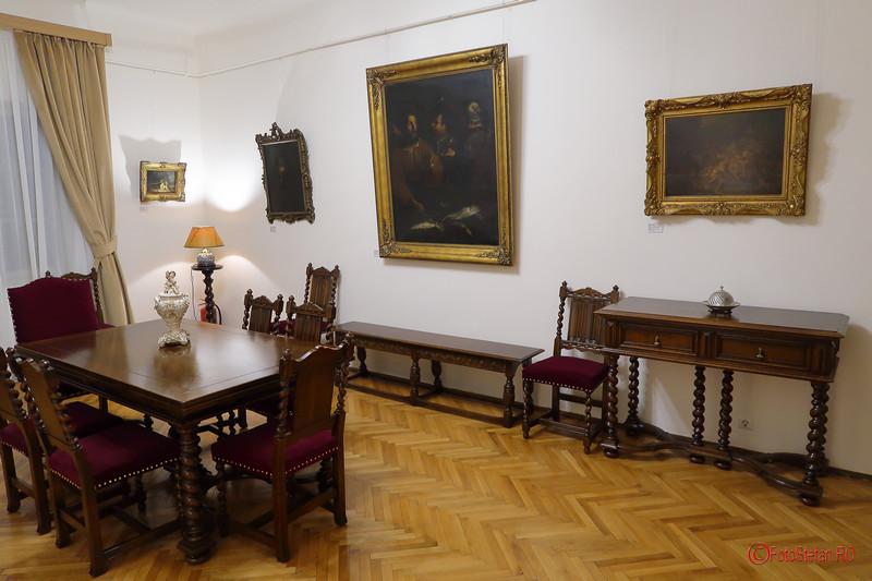 fotografii mobila tablouri muzeul Victor Babes doctor bucuresti
