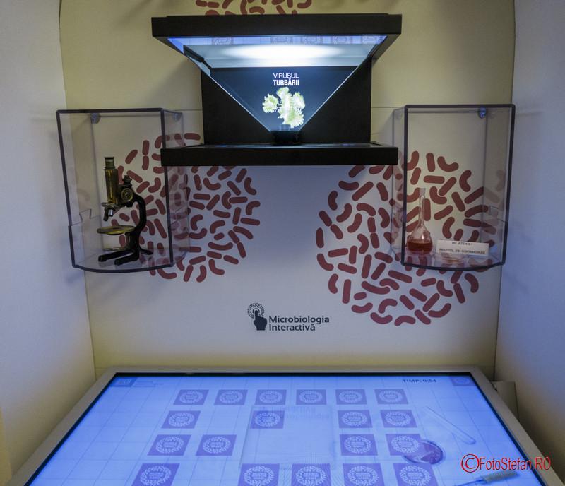 poza fotografie muzeul Victor Babes prezentare interactiva 3D