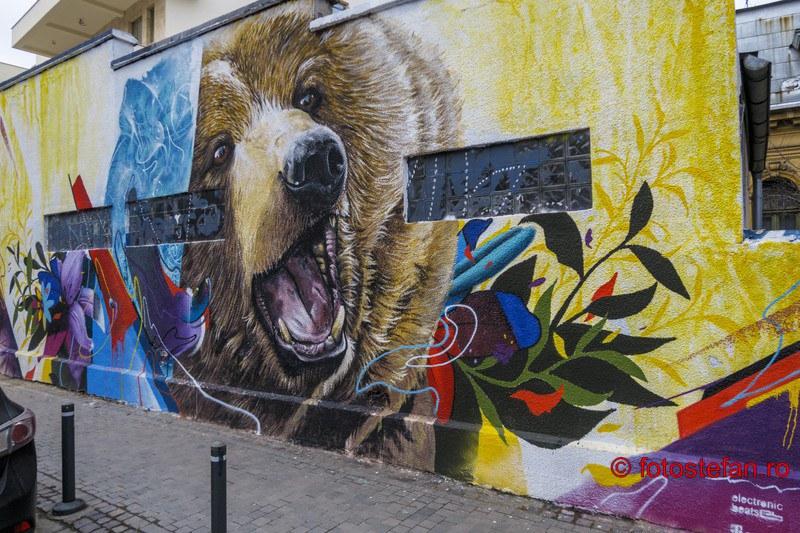 poza graffiti urs strada Arthur Verona bucuresti