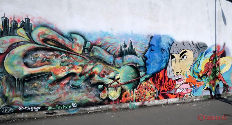 poza graffiti arta urbana desen timisoara fotografii romania