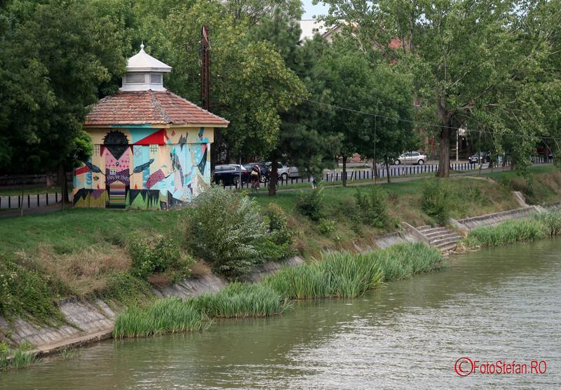 poza bega timisoara graffiti fotografii romania