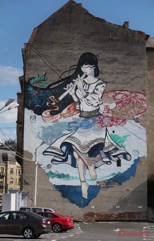 arta urbana Timisoara poze graffiti romania fotografii