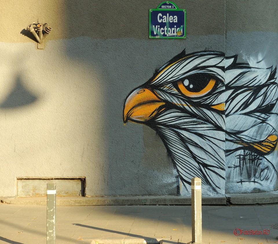 poze vultur harta graffiti bucuresti