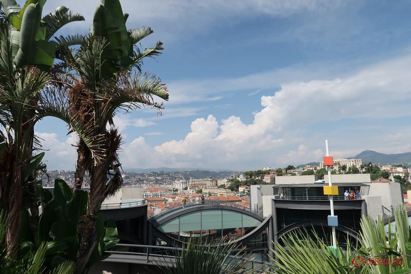 poze terasa palmieri Muzeul de arta contemporana si moderna din Nisa franta