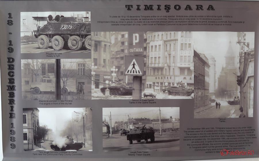 poze armata revolutia decembrie 1989 timisoara romania