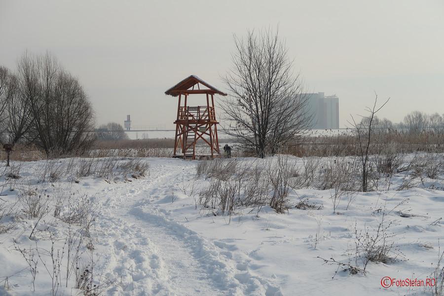 foisor parcul Vacaresti Bucuresti fotografii iarna zapada
