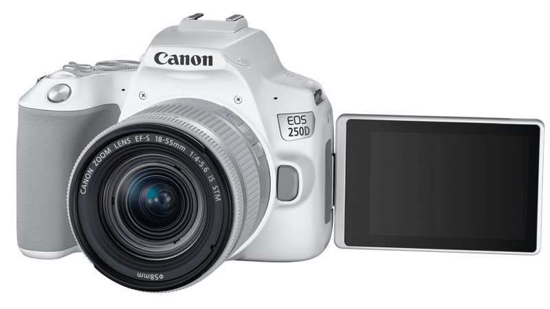 poza aparat foto dslr Canon 250D alb lcd mobil