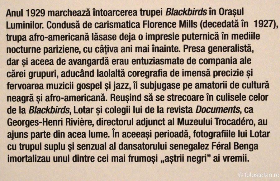 Blackbirds trupa teatru muzica
