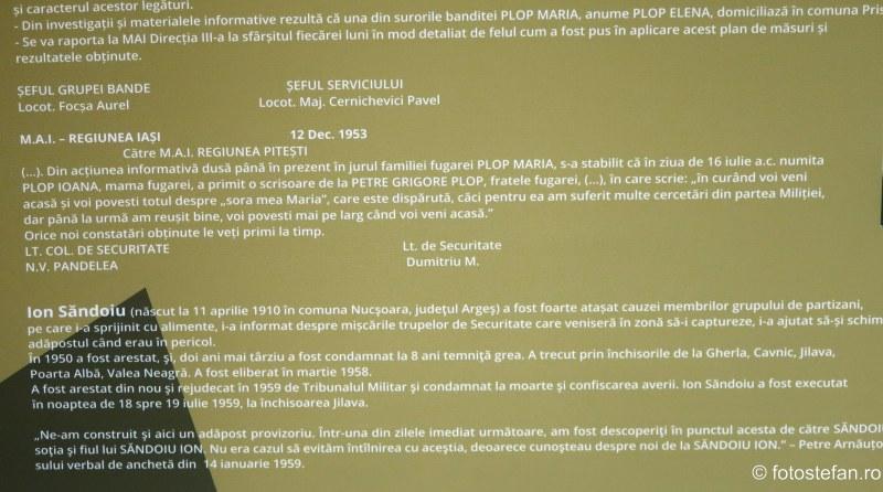 poza raport securitatea cnsas tnb romania
