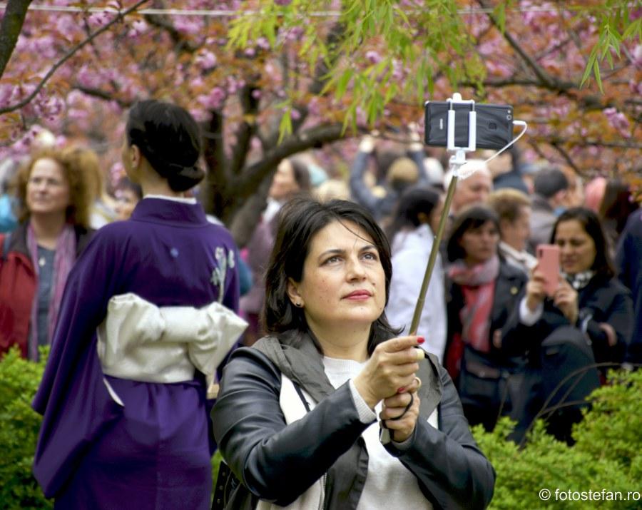 poze salfie gradina japoneza parcul herastrau fotografierea florilor de cires
