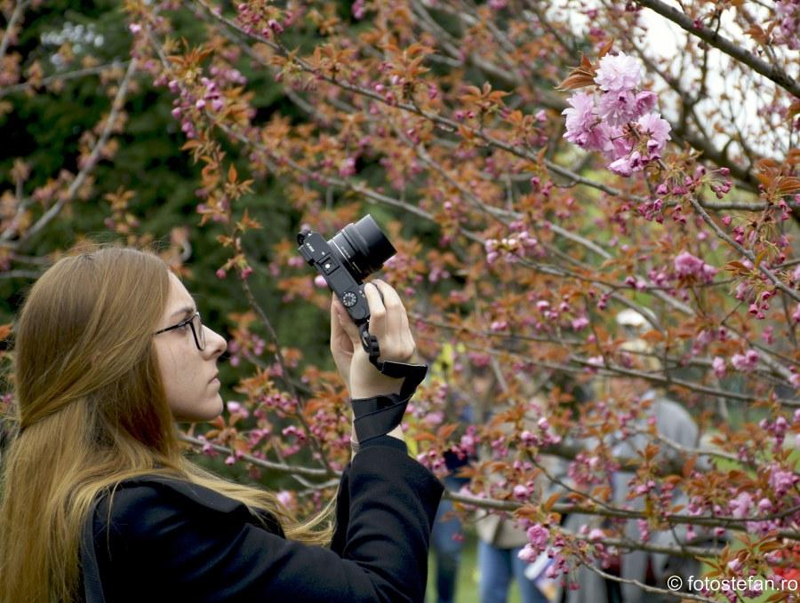 poza fata fotografa flori de cires sarbatoare japoneza